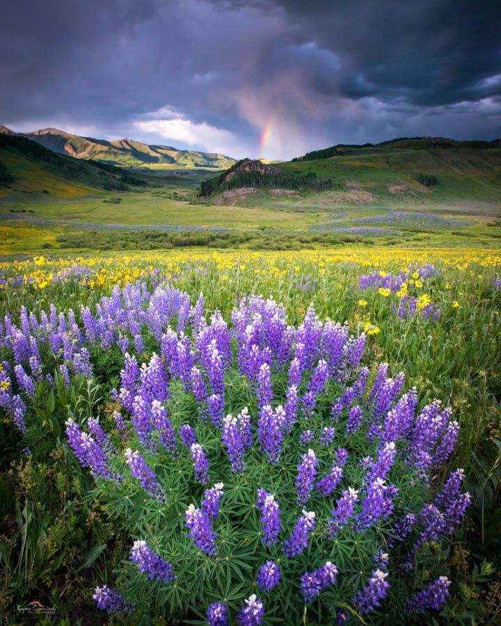Colorado_Landscapes-1