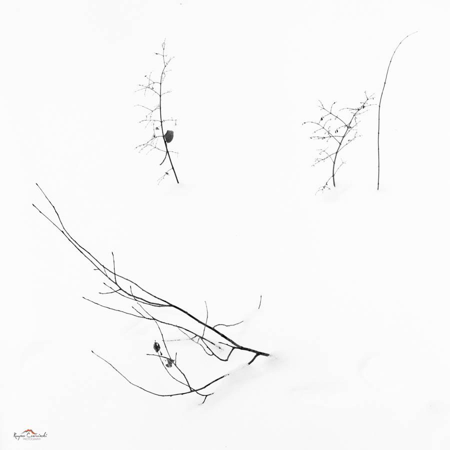 Minitures-18