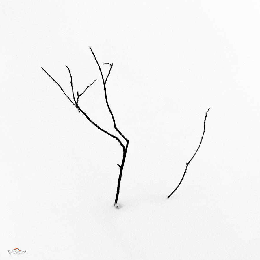 Minitures-23